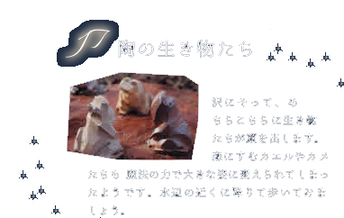 陶の生き物たち